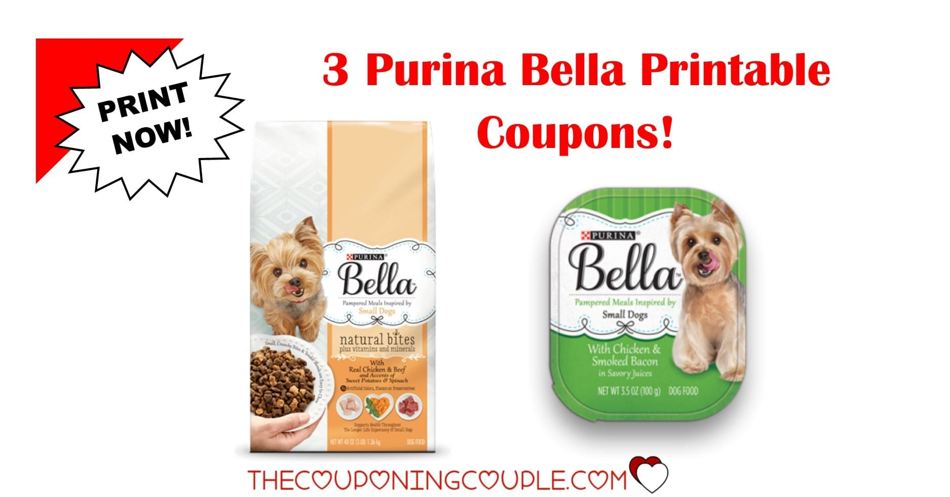 photo relating to Printable Pet Coupons referred to as 3 Refreshing Purina Bella Puppy Foodstuff Printable Coupon codes ~ PRINT By now!